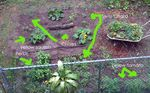 Garden Overview - annotated
